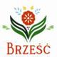 Brzesc